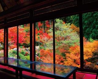 秘境で色付く秋風景を見に行こう!佐賀・唐津~多久エリアの絶景ドライブスポット5選