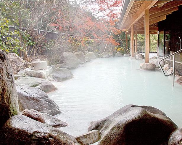 国民宿舎 青雲荘 / pH4.3の単純硫黄泉は肌に優しくなめらかな湯触り