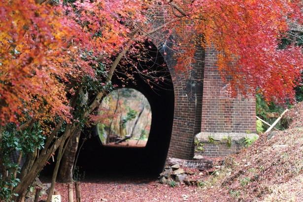 モダンな情緒を残す赤レンガ造りのトンネル