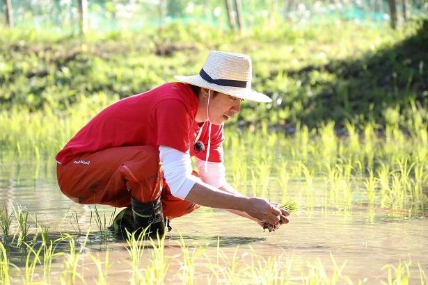【写真を見る】村上信五がビートたけしのために半年かけて米作りに挑戦