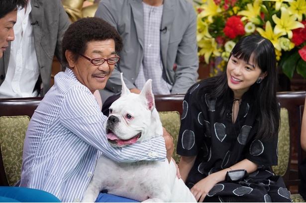 9月9日(日)放送の「行列のできる法律相談所」で芳根京子が具志堅用高の愛犬・グスマンにドッキリを仕掛けられる!?