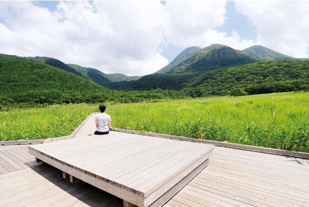 タデ原湿原 / 展望デッキから高原の風景を一望。ラムサール条約に登録されているタデ原湿原が眼前に広がる