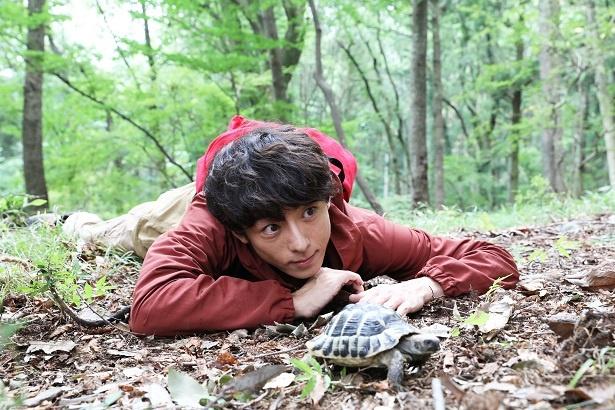 """【写真を見る】高橋一生が亀をなでる""""愛らしい""""ショットも到着!"""