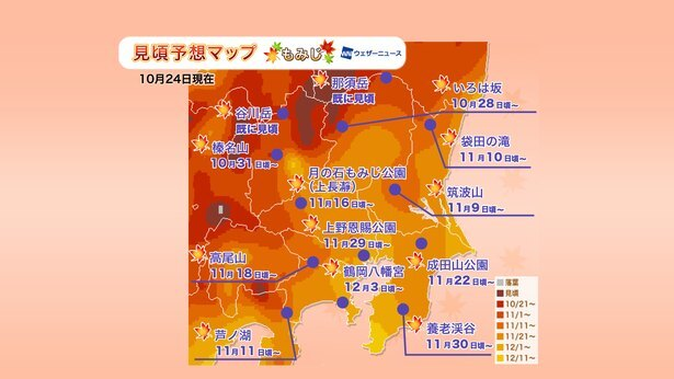 2019年 関東の紅葉見頃予想マップ(10月24日現在)  出典:ウェザーニューズ