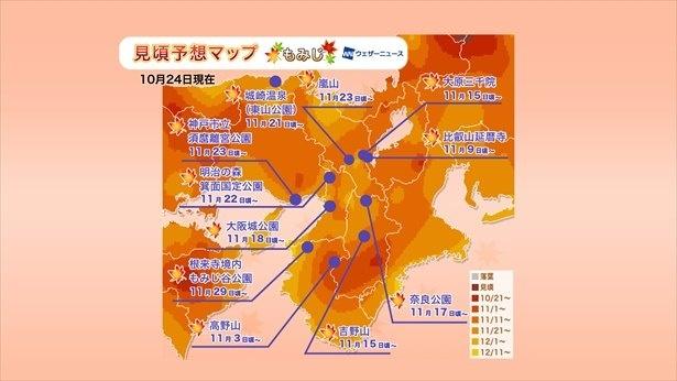 2019年 近畿の紅葉見頃予想マップ(10月24日現在)  出典:ウェザーニューズ