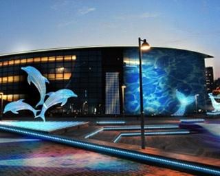 海峡エリアを光の水族館で彩る!山口県で「イルミネーション水族館」