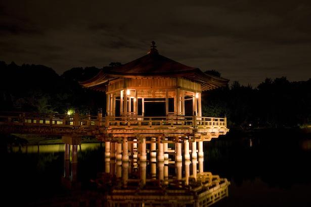 【写真を見る】奈良公園内の鷺池に建つ六角形の建物・浮見堂もライトアップされる