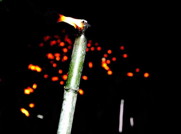 【写真を見る】火を灯したタイマツを手に、1300本の行列で歩く