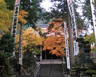 紅葉が、本堂や境内をあかね色に彩る/谷汲山 華厳寺