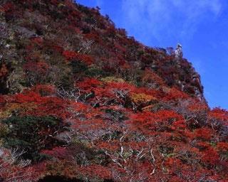 轟峡 / 滝とともに紅葉を眺める