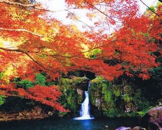 厳選!秋の極彩色に染まる鹿児島の紅葉絶景6選