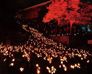 心温まる街なかライトアップイベント!たけた竹灯籠「竹楽」