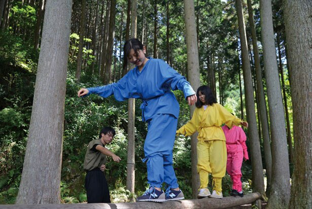 家族や友達と忍者体験するのも楽しそう!/忍者の森