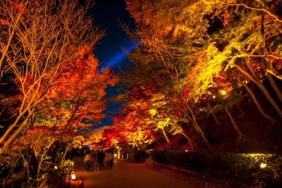 轟門から放生池に抜ける通路では、両わきから燃えるような紅葉が頭上をおおう。紅葉の間に見える観音慈悲光も神秘的なので、ぜひ撮影を!