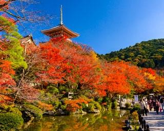 京都屈指の紅葉スポット・清水寺!見ごろ&混雑状況をチェック