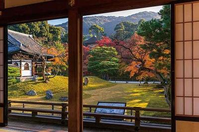紅葉で秋色に染められる、桃山時代を代表する庭園を書院から眺めよう。臥龍池の紅葉や木々の緑が美しい