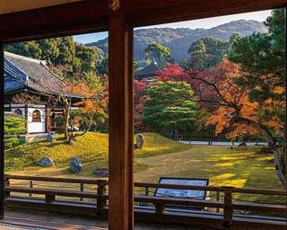 京都・高台寺の紅葉はいつがベスト?混雑回避のコツも紹介します!
