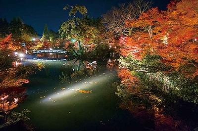 極楽橋の上に立って放生池の中心を眺めると、 燃えるような紅葉や池の中心に立つ弁天社を望める。弁天社にかかる橋が池に映るのも美しい