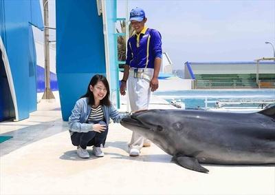 イルカとの記念撮影