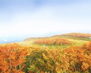 毎年恒例・夏油高原温泉郷の秋祭り!岩手県で「夏油高原紅葉まつり」開催