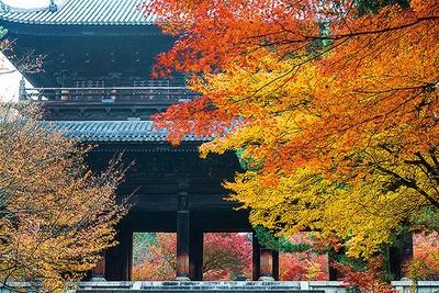 昼間は天授庵だけでなく、南禅寺の紅葉も美しい。楼上へも上がれる三門や、別名「虎の子渡し」の庭と呼ばれる名庭・方丈庭園(各500円)などがおすすめ