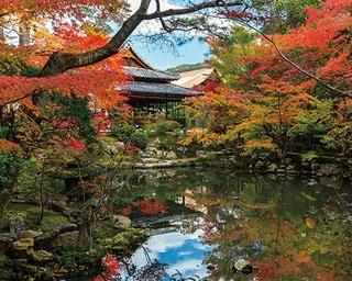 2つの美しい庭園紅葉を満喫!南禅寺天授庵で楽しむ秋の絶景