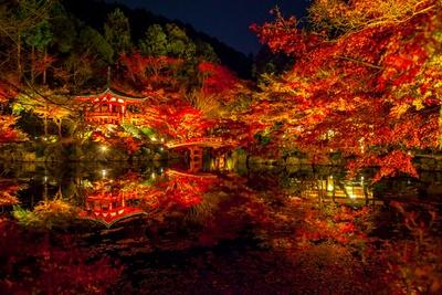 【写真を見る】ライトアップされた幻想的な紅葉にうっとり!朱塗りのお堂が水面とよく合う弁天堂も紅葉の名所