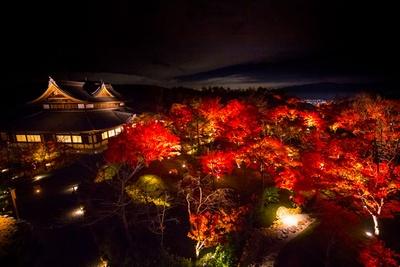 【写真を見る】古都の夜景を背景に紅葉が広がる絶景スポット!