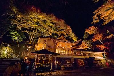 石段を上った先にある、高龗神を祭神とする本宮。周囲を彩る紅葉が本宮と共に浮かび上がり、神秘的な雰囲気が漂う