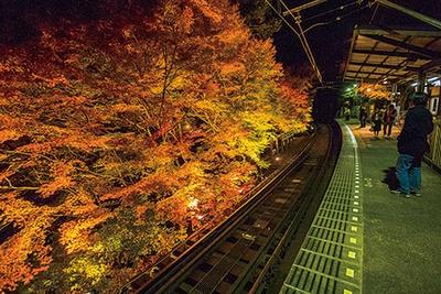 叡山電車貴船口駅のホームでも、ライトアップされた紅葉を存分に楽しめる。帰る間際まで見事な紅葉を眺められるのは貴船エリアならでは