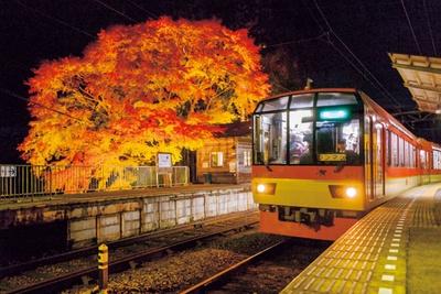 出町柳駅~鞍馬駅間を結ぶ叡山電車きらら。天井までが窓になっている。出町柳駅発の運行時間の詳細はHP参照