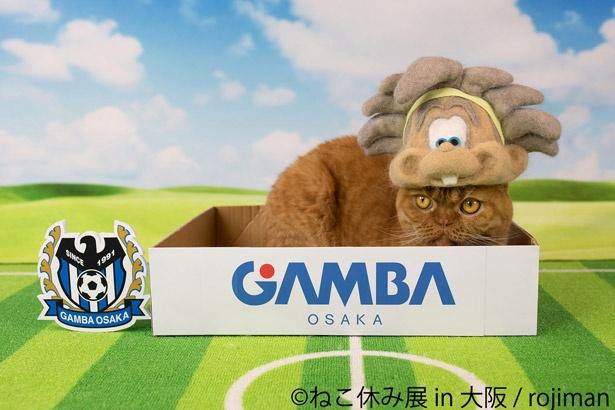 【写真を見る】ガンバ大阪コラボもあるニャン