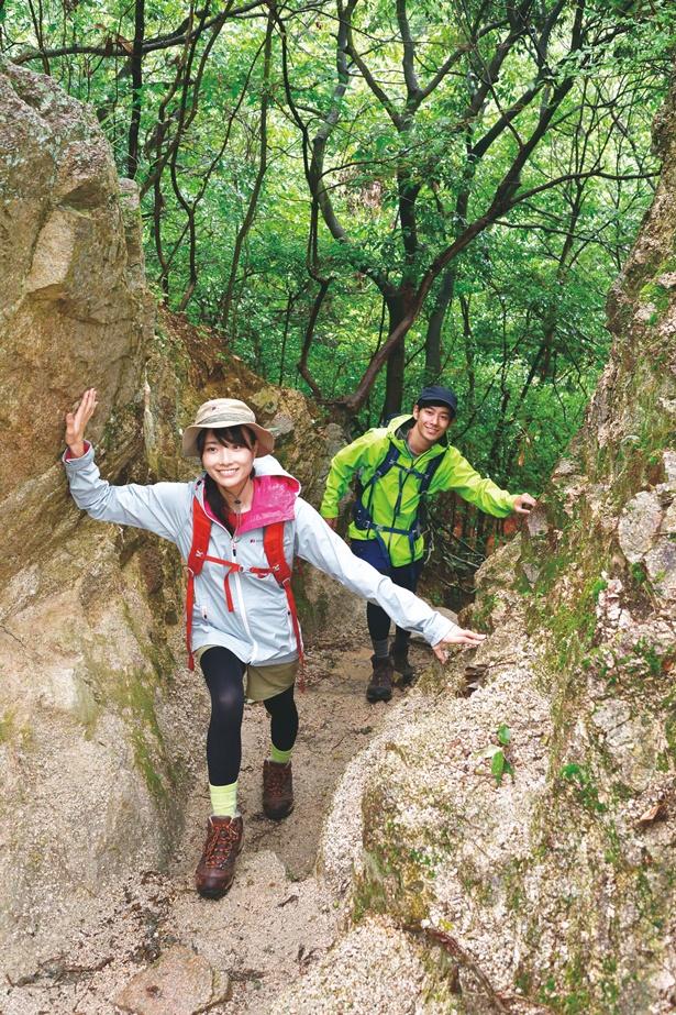 特集「山登りのプロに聞いた!絶景ハイキング」では初心者でも安心のハイキングコースを紹介!