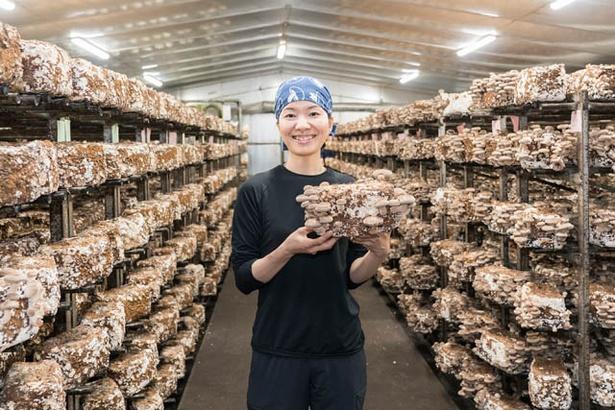 宝珠山きのこ生産組合理事の川村倫子さん「シイタケは鮮度が命。採れたてを味わってください」