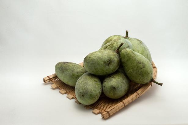 """北米原産のフルーツ""""ポポー""""はどんな味?"""