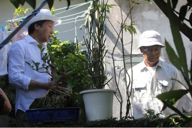 【写真を見る】80本以上の植木鉢に驚く前川