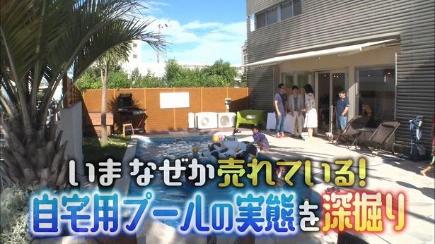 【写真を見る】マツコデラックスが魅了される自宅用プール