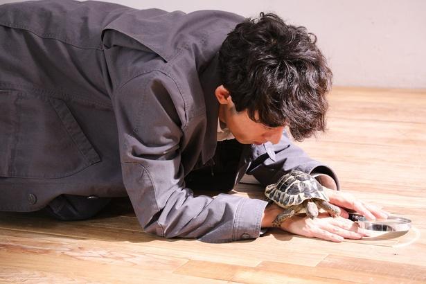 【写真を見る】高橋一生と相思相愛のカメのジョージ