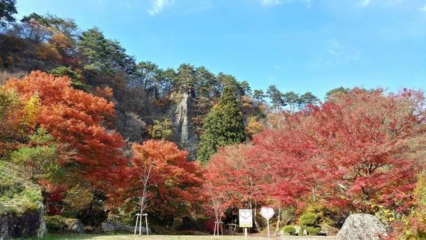 奇岩怪石を美しく彩る紅葉
