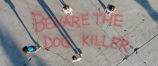 「犬殺しに気をつけろ」という落書きが街のいたるところに出現