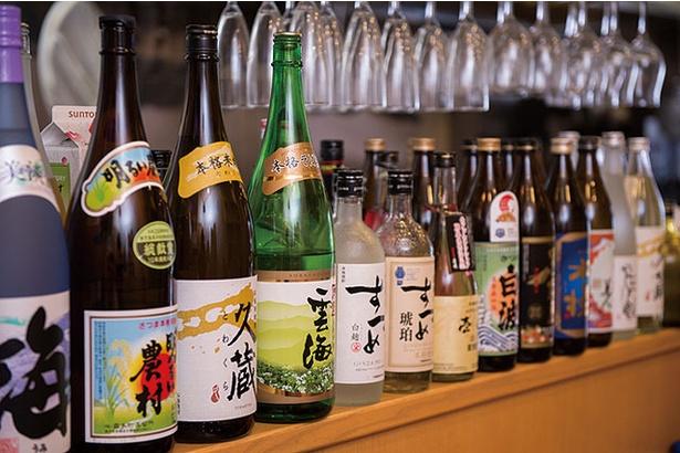 博多うどん居酒屋 泰吉 / 焼酎は400円~、日本酒は650円~と多彩にそろう
