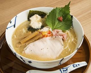 ラーメン新時代に突入!煮干しだけじゃない神奈川の魚介系ラーメン3選