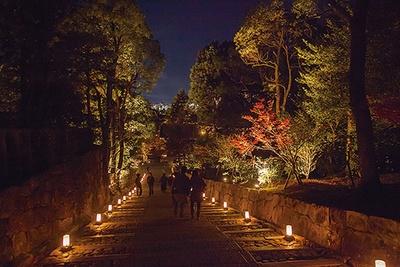 【写真を見る】なだらかな石段が続く女坂では、歩きながら頭上を真っ赤に染めるカエデを眺めて/知恩院