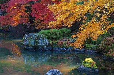 国宝である三門や、友禅苑の紅葉が見事/知恩院