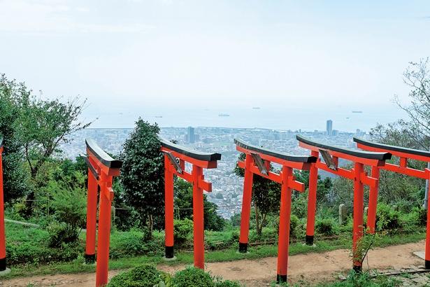 境内の高台からの眺めは、鳥居の朱色と山、青空のコントラストが美しい