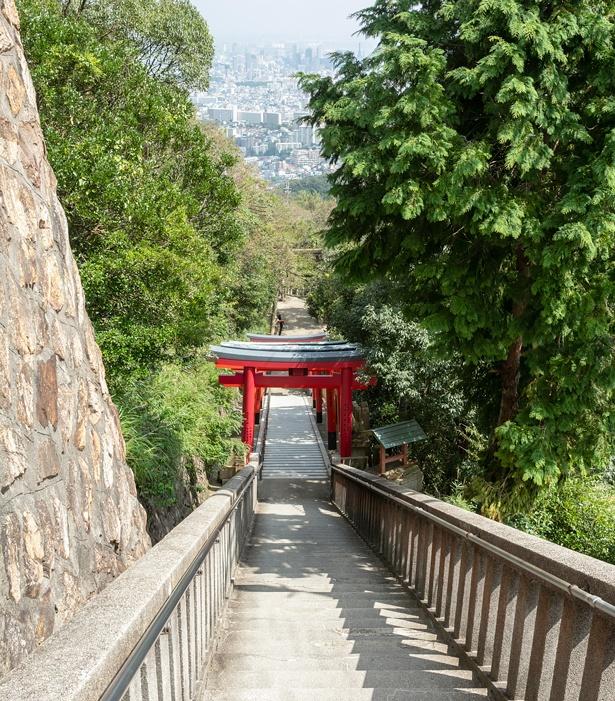 鳥居の先に神戸の街が広がる階段からの眺め。風景を楽しみながら下山しよう