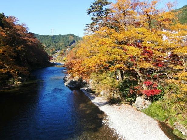 清流ガーデン 澤乃井園のオープンデッキから望む紅葉も見事だ