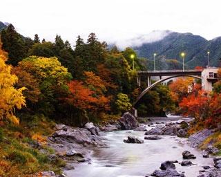青梅・御岳渓谷の紅葉はいつが見ごろ?寄り道スポットも合わせて紹介