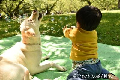 子ども×動物は最高の癒し!