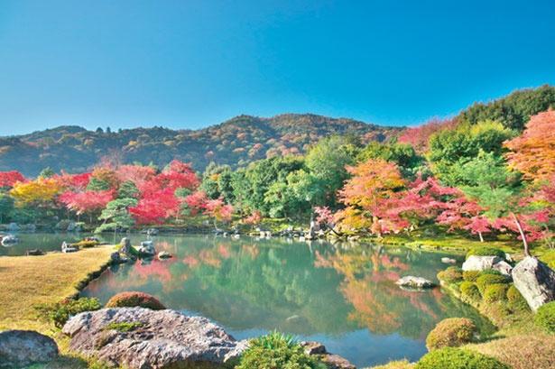 借景という庭の外にある山や木などを庭園内の風景の背景とする方法を用いられている/天龍寺